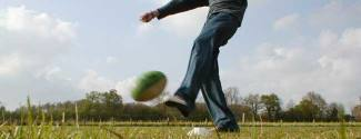 Etudier l'Anglais et pratiquer un sport