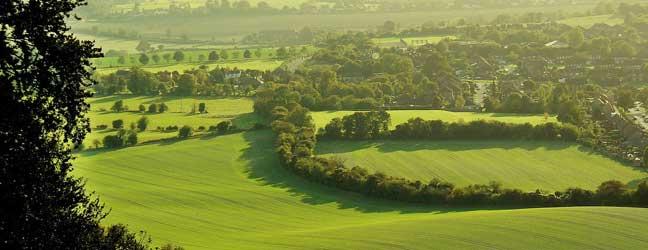 Buckinghamshire - Immersion chez le professeur dans le Buckinghamshire