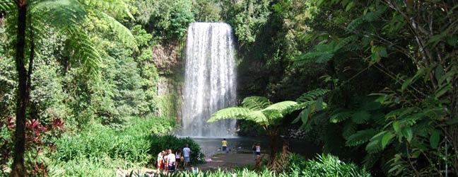 Cairns - Immersion chez le professeur à Cairns pour un enfant
