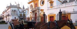 Immersion chez le professeur en Espagne Séville