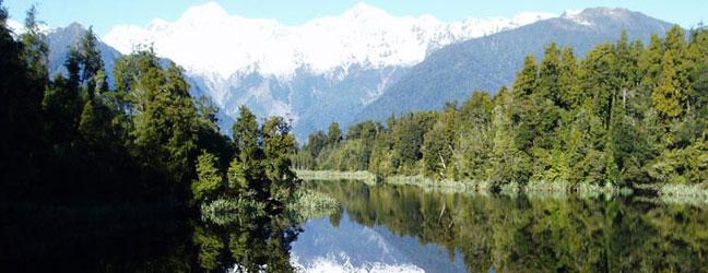 Préparation au TOEIC en Nouvelle Zélande